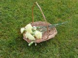 Willow Bridesmaids flower basket
