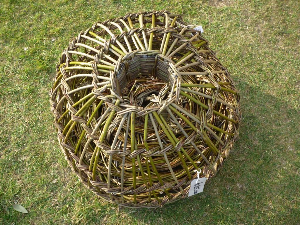 Garden willow | Lynns Willow