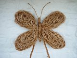Willow Butterfly