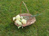 Willow Bridesmaids flower basket
