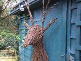 Willow Deer head